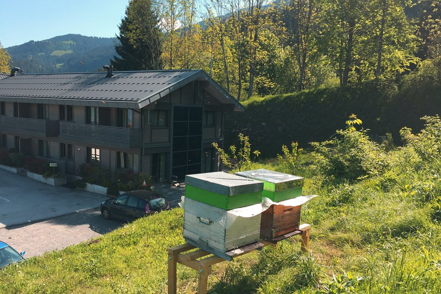 Un chalet version BioClimatique | ActiveMag